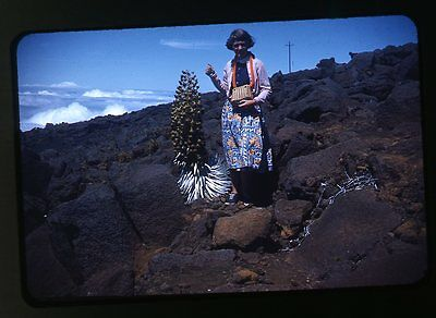 1950s red border Kodachrome Photo slide Teen Girl in nice skirt & Lei fashion
