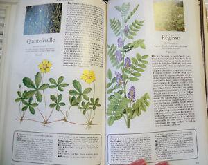 Secrets et vertus des plantes médicinales / Sélection Reader's Québec City Québec image 6