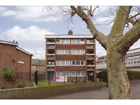 1 bedroom flat in Elephant and Castle -with balcony and Parking