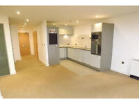 COMPLETELY BRAND NEW 2 BEDROOM FLAT