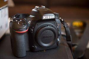 Nikon D750 DSLR Berry Shoalhaven Area Preview
