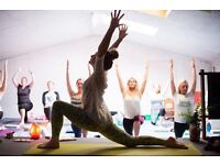 Vinyasa Flow Yoga Teacher