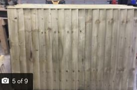 Timber fence panels feather edge