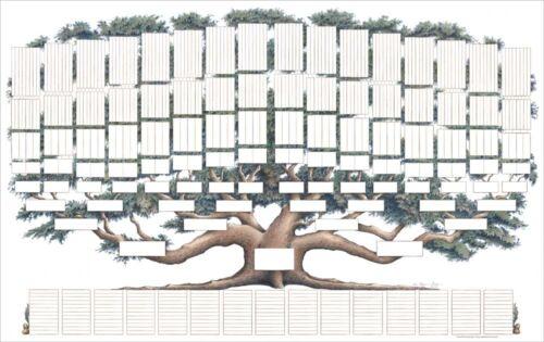 Family Tree Chart 9 Generations Genealogy, Full Color, New, Artist Raymon Troup