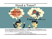 Dissertations and Tutoring - Economics, Finance, Stats or Maths