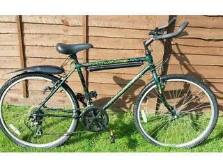 Rayleigh Outland unisex bike 20 inch. Green and black