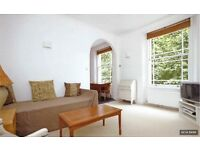 GORGEOUS 1 BEDROOM FLAT IN ISLINGTON/DE BEAUVOIR