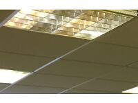 Suspended ceiling with lights