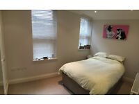 Double Bedroom in beautiful 3 bedroom flat in Balham (Avaliable 31st March)