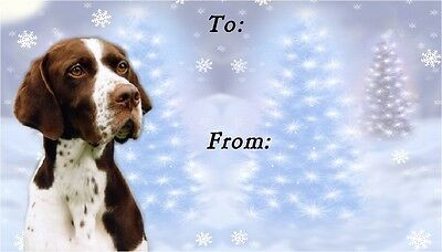 Pointer Dog Christmas Labels by Starprint - No 2