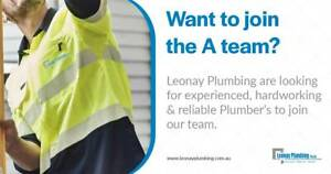 Plumber's Wanted