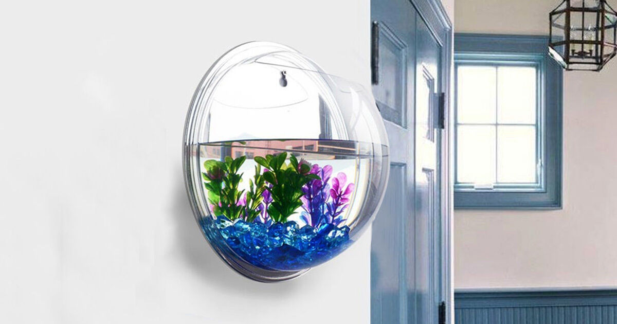 Cool stuff to buy on ebay ebay shop by category junglespirit Gallery
