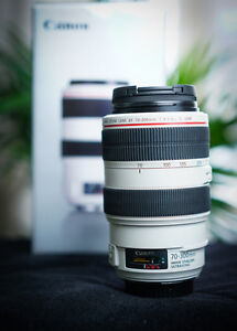 Canon 70-300mm f4 - 5.6L IS