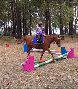 12.2 hh Australian Riding pony Boyup Brook Boyup Brook Area Preview