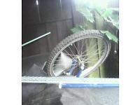 Mountain bike wheels