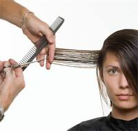 20 Year Experienced Mobile Hairstylist