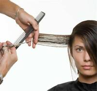 20 Year Experienced Mobile Hairstylist for Women/Men
