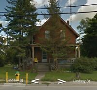 Fenelon Falls Commercial/Residential House For Sale