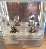 Mint condition regular bulbs