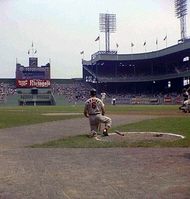 MLB Stan the Man Musial Polo Grounds On Deck Circle 8 X 10 Color Photo Free Ship - Stan The Man