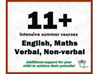 Highly Experienced 11+ (CEM- Verbal and Non-V. Reasoning), Maths and English tutor (KS1-KS2),