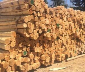New Cedar Fence Posts & Oak Fence Boards