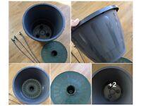 Houseplants - Indoor plants - Garden plants - Megamax hanging basket - Extra Large pot