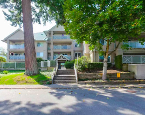 This Is A Must See! Large End Unit Ground Floor Condo