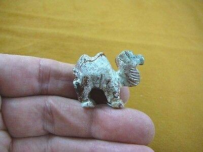 Y-CAM-21) gray CAMEL camels desert SOAPSTONE FIGURINE gemstone carving dromedary