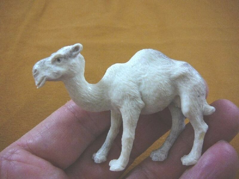 (cam-2) white Camel of shed ANTLER figurine Bali detailed carving dromedary