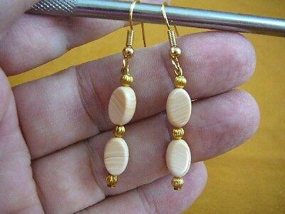 - EE-488-11) Rare tan ivory Helmet Shell 10x6x4 mm oval bead dangle gold earrings