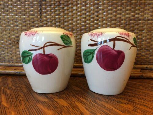Blue Ridge Autumn Apple Salt and Pepper BARREL Shakers Set of 2