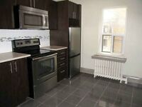 Renovated 1 Bedroom meters from The Beach! Pet Friendly