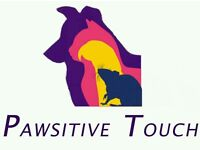 Pawsitive Touch Professional Pet Care - Dog Walker, Cat Sitter, Home Visits, Small Animal Boarding