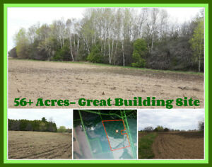Better Investment than the Stock Market!!  56 Acres