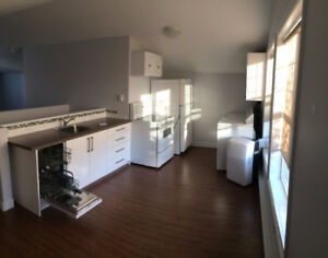 Large 1 Bed Detached Suite in Upper Mission