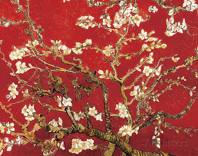 Almond Blossom - Red Mini Poster By Vincent van Gogh - 11x14
