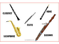 Wanted - woodwinds Instruments Clarinet flute saxophone oboe