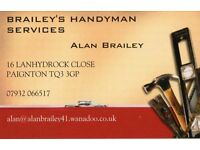 professional Handyman services covering torbay with over 20years experience