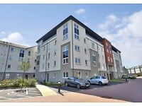 One bedroom Modern Executive Apartment in Old Aberdeen