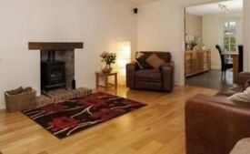 En Suite Double Room in large, modern house for single occupancy to professional person only