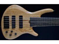 Roscoe Century Standard 6 String Fretless Bass.