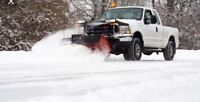 ❄️Unlimited Snow Removal Services❄️