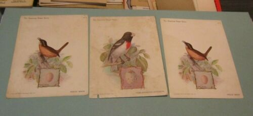 1898 American Singer Series 11 Victorian Bird Card Lot Sewing Machines on Back