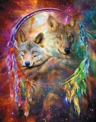 Native American Dream Catcher Spirit Wolves 8.5x11 Matte Art (Native American Dreams)