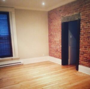 Amazing 1 bdr apartment McGill Ghetto 1285$ July 1st