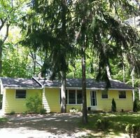 Last minute cottage rental - Grand Bend
