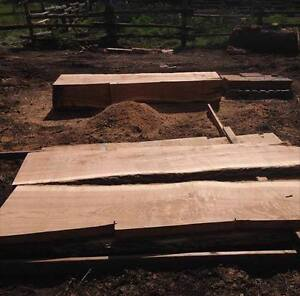 Solid Oak Slabs Great For Your Next Project!