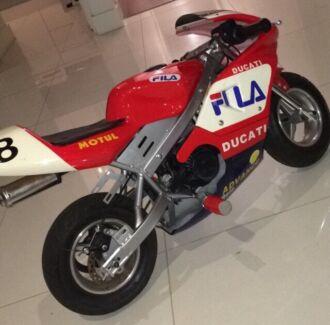 50cc 2stroke Ducati pocket bike  Millswood Unley Area Preview