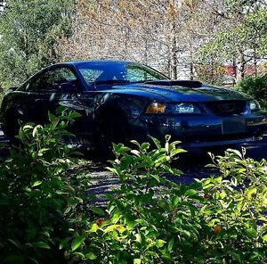 2003 Ford Mustang Base Coupe (2 door)